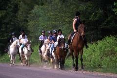 centre-equestre-des-menhirs